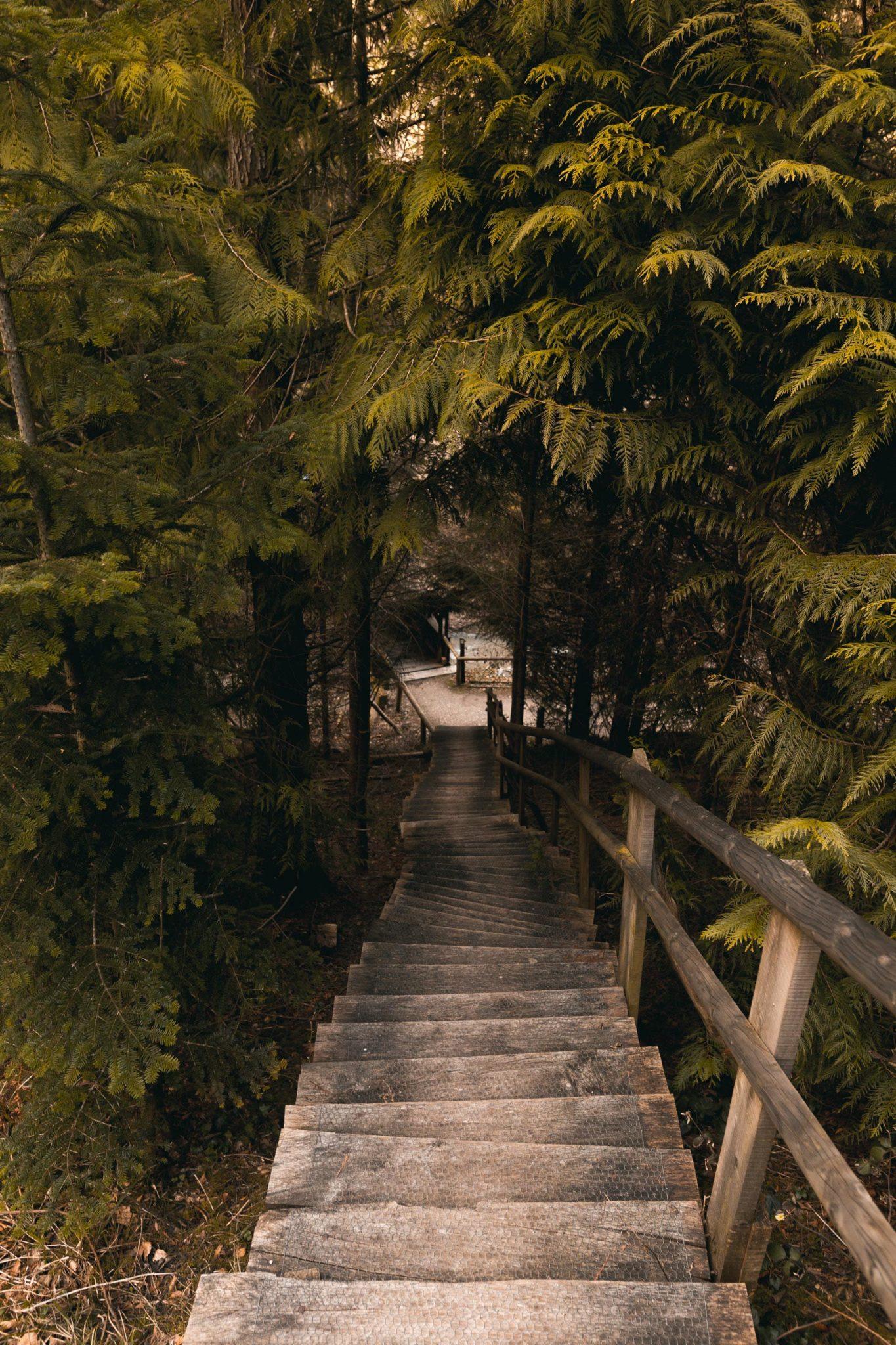 Arboretum_0018