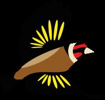 proposition logo 2